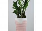 Vase trait - rose